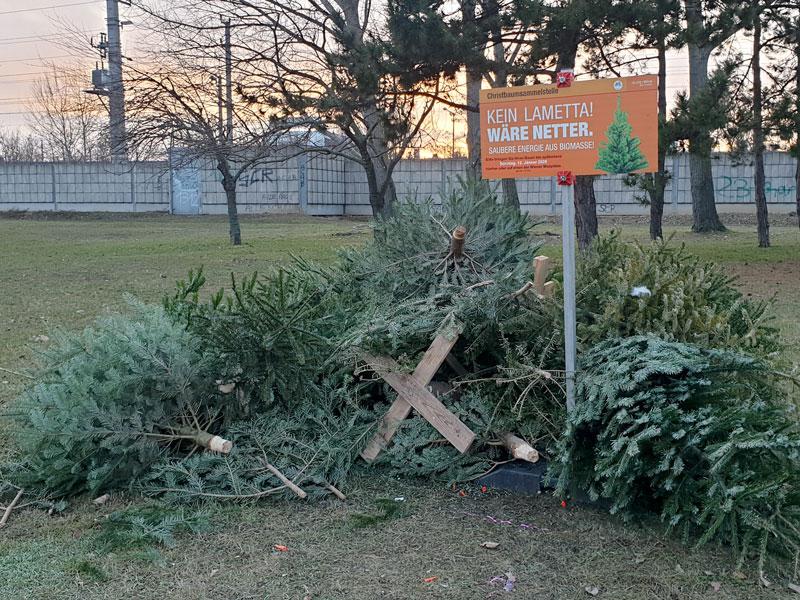 Weihnachtsbaum Sammelplatz - Wien