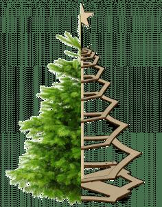 nachhaltiger Weihnachtsbaum, Ökologie